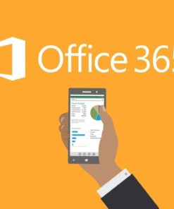 Formation Administration Microsoft Office 365 à Lille