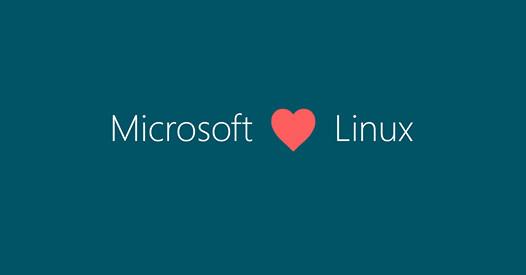 Microsoft dévoile un produit sous Linux | Geek Mexicain